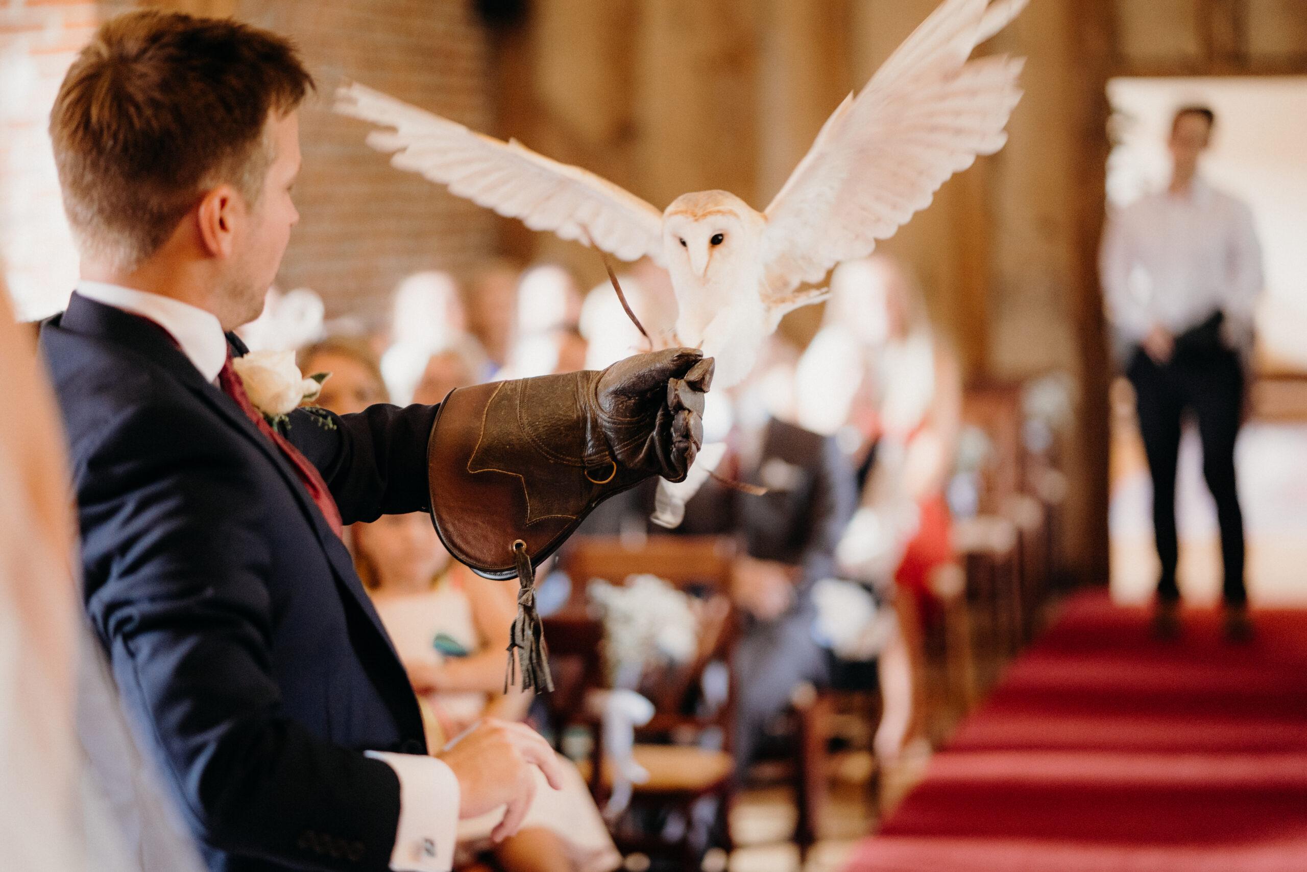 Owl ring bearer for wedding ceremony